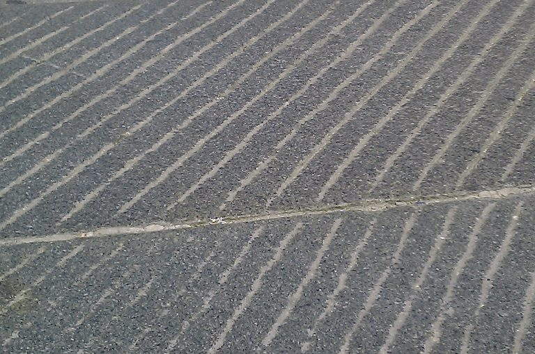 Stone-Curators_Grooved_granite_sidewalk-grooved-closeup