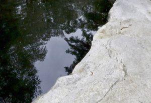 Stone-Curators-reclaimed-granite-ledge-pond-coping-natural_MG_1131