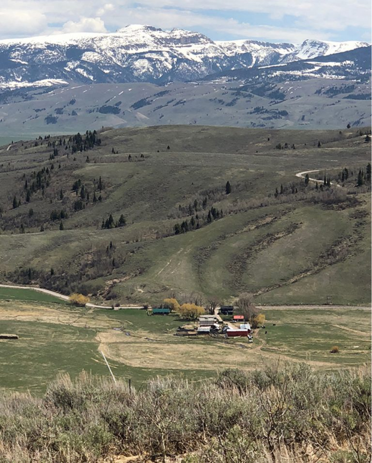 Stone-Curators-House-site-in-Montana@2x